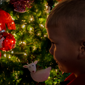 Handsome by Jamie Hodge - Public Holidays Christmas ( boys, christmas lights, christmas, christmas tree, kids,  )