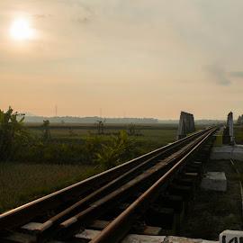 Cool place by Alfandy Setiawan - Landscapes Sunsets & Sunrises ( #railway #train #landscape #photograpy #nikon #sunrise )
