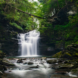Big Falls in the Wet Wilderness by Gene Walls - Landscapes Waterscapes ( water, stream, boulders, state game lands 13, waterfall, cliff, forest, pennsylvania, heberly run, wilderness, big falls, falls, creek, trees )