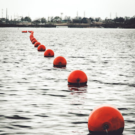 Follow the Orange Floaters by Rob Heber - Artistic Objects Other Objects ( natural light, buoy, reflections, line, bobbing, warning buoys, lake shore, recreation area, choppy waters, nature, ripples, shoreline, marker buoys, red colored, water, string of buoys, waves, vanishing perspective, lake, reflections in water, floating on water, reflecting, lake view, lake water, pattern, marker, orange colored, outdoors, floating, row of buoys, warning )