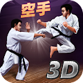 Game Karate Fighting Tiger 3D apk for kindle fire
