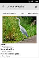 Screenshot of BirdScout