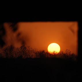 Sunset  by Amit Suvera - Landscapes Sunsets & Sunrises ( shiloute, sunset, sunrise, travel, landscape )