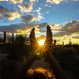 Hands holding the sun by Jeana Caywood - Babies & Children Hands & Feet ( child, sabino canyon, desert, sunset, tucson )