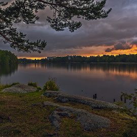 by Bojan Bilas - Landscapes Sunsets & Sunrises ( nature, waterscape, fall, suomi, finland, forest, long exposure, landscape, rauma )