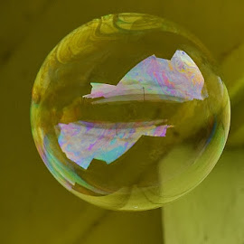 Bubble by Eloise Rawling - Artistic Objects Other Objects ( bubble )