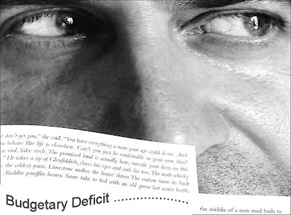 Budget Deficit Types of Budgetary Deficit