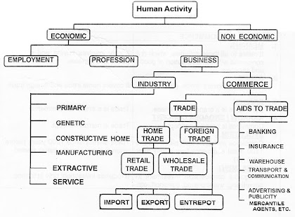classification of human activity