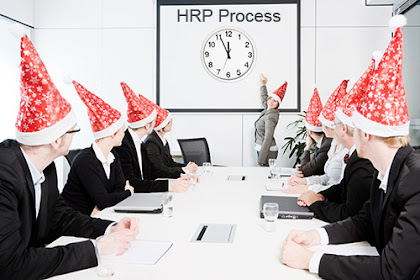 Steps in HRP Process