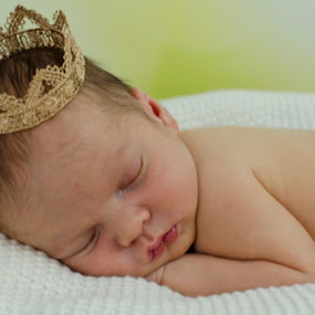 The Prince by Carolyn Holland - Babies & Children Babies