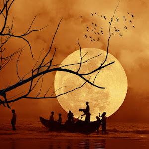 Bangladesh 6.jpg