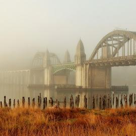 Siuslaw Bridge in the Fog by Lori Pagel - Buildings & Architecture Bridges & Suspended Structures ( water, oregon, arch, grass, architecture, piling, pilings, foggy, nature, fog, outdoors, architectural, oregon coast, pillar, bridge, wet, misty, pillars, mist, river )