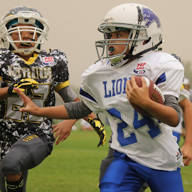 Pop Warner Mitey Mite Football by Liza Bain Echelberger - Sports & Fitness American and Canadian football