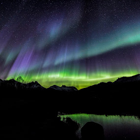 Aurora colorful by Benny Høynes - Landscapes Starscapes ( canon, winter, colors, northern lights, aurora borealis )