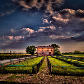 Field by Luigi Esposito - Landscapes Prairies, Meadows & Fields ( clouds, field, fence, sky, tree, cloudscape, trees, fences, house, fields )