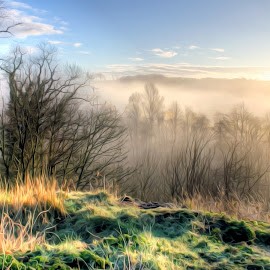 Annbank sunrise  by Stephen Crawford - Landscapes Sunsets & Sunrises ( tonemapping, colour, hdr, wide angle, sunrise, early, mist, annbank,  )