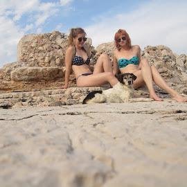 Three happy friends by Ana Maria Fistonić - Nature Up Close Rock & Stone ( mediterranean, friendship, summerland, beach, dog )