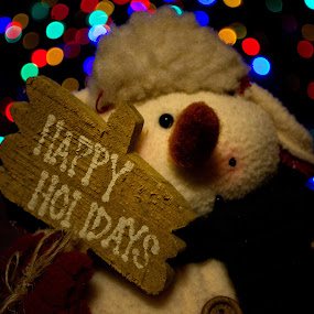 Snowman Greetings by Michael Mounts - Public Holidays Christmas
