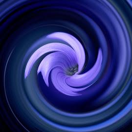 SWIRL'S FLOWER by Yako Laverde - Digital Art Things ( colour, macro, nature, swirl, art, flower )