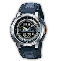 Casio Standard : AQF-101WB