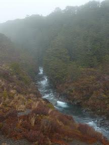 Rivière à Tongariro