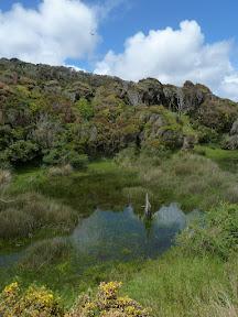 Parc national Chiloe