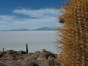 Vue depuis l'île Incahuasi
