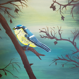 Little blue tit by Stephanie Veronique - Painting All Painting ( acrylic painting, bigginer artist, eurasian blue tit )