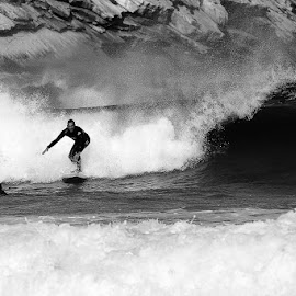 On the wave by Jorge Pimentel - Sports & Fitness Surfing ( black and white, waves, sports, surf )