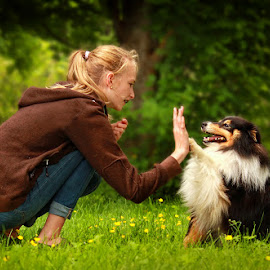 High five! by Jane Bjerkli - Animals - Dogs Playing