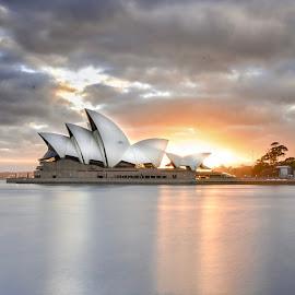 Sydney Opera House  by Angela Taya - Novices Only Objects & Still Life