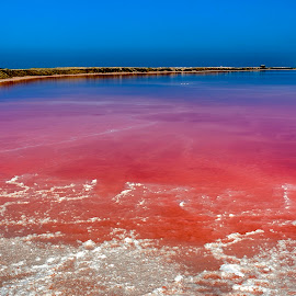 Salt Water by Johan Jooste Snr - Nature Up Close Water ( water, color, sea, pink, pond, namibia, salt )