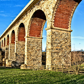 Bridge Shot by Lee Iveson - Novices Only Landscapes ( brick, bishop auckland, stone, bridge, river )