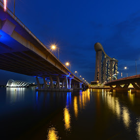 MBS in Between two bridge by Welly Agus - Buildings & Architecture Bridges & Suspended Structures ( blue hour, mbs, night shoot )