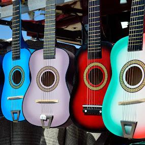 by Rany Haj - Artistic Objects Musical Instruments ( nikon 18-140, d7000, guitar,  )