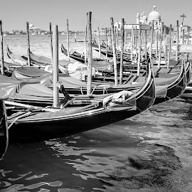 Venice by Elliot Mednick - Black & White Landscapes