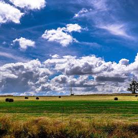 Suikerbos 2 by Doornkop Photos Hein van Niekerk - Landscapes Cloud Formations