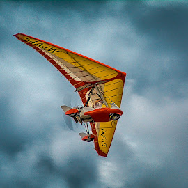by Dragan Rakocevic - Transportation Airplanes
