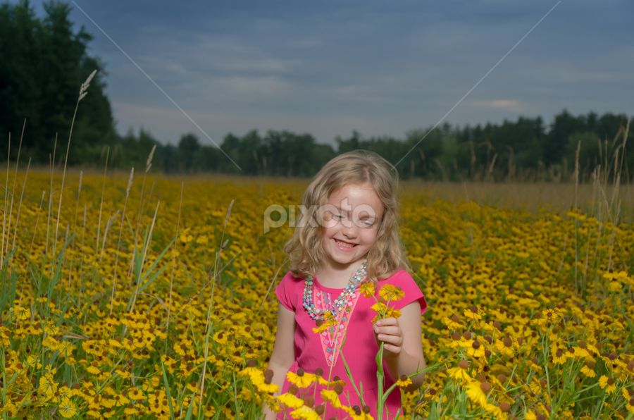 Flower Girl by Chris Cavallo - Babies & Children Child Portraits ( maine, flowers, golden hour, yellow, girl )