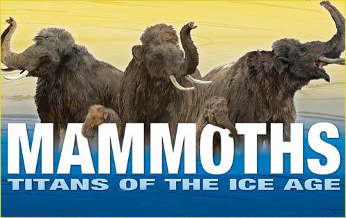 Mamut Tytan Epoki Lodowej / The Mammoth (2010) PL.TVRip.XviD