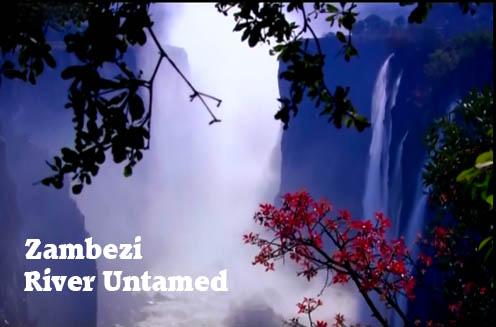 Zambezi / Zambezi (2010) PL.720p.HDTV.x264 / Lektor PL