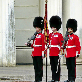 Royal Guard by Tony Huffaker - Professional People Military ( england, soldiers, royal guard, london, buckingham palace,  )