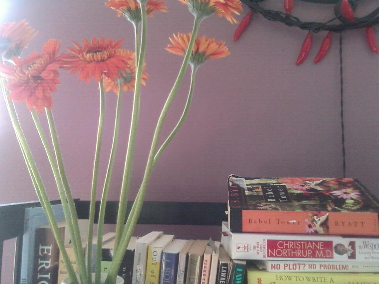 Sort of Wordless Wednesday: A Room of my Own that I Share