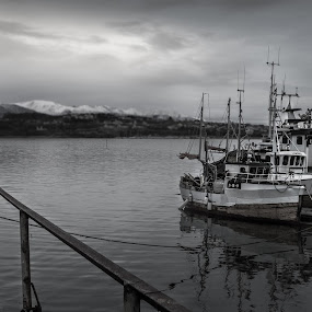 fishing boats by Thomas Ebeltoft - Transportation Boats ( canon, boats, sea, boardwalk, norway )