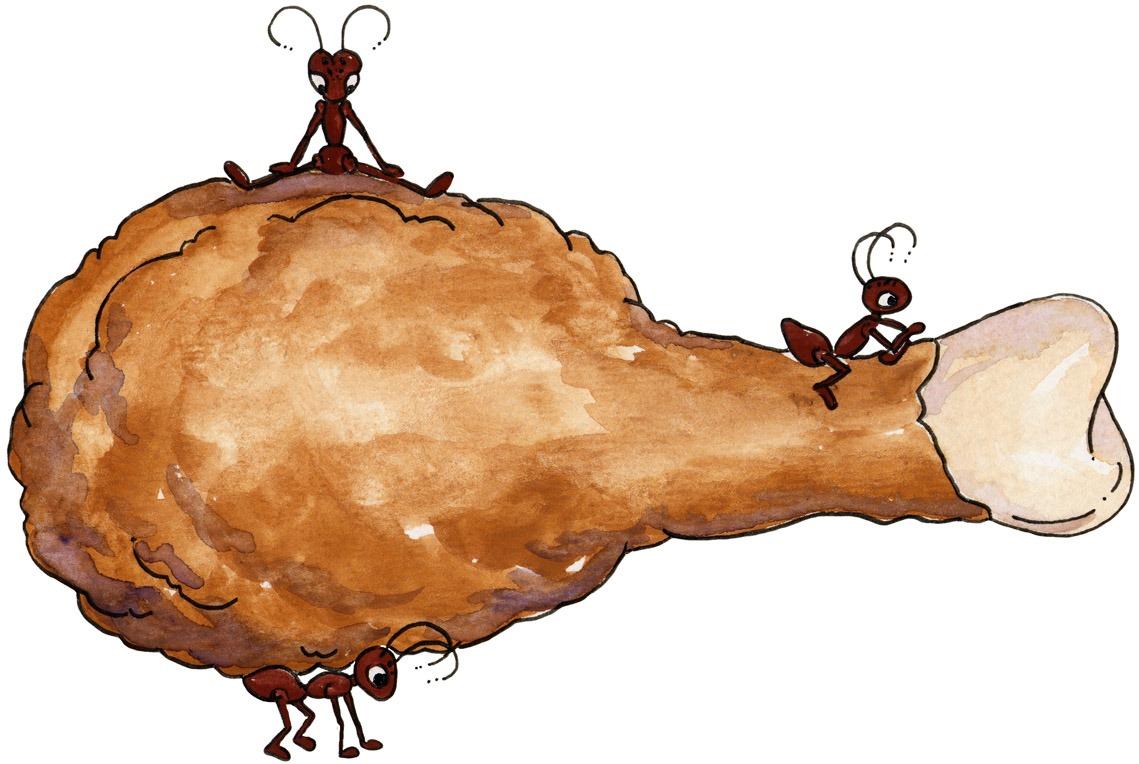imagem+decoupage+clipart+Ant+n+Chicken[4