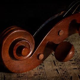 Violin by Susan Van Wyk - Artistic Objects Musical Instruments ( violin, music, makro, sheet music, brown )
