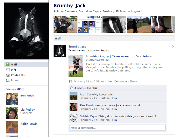 Brumby Jack screenshot