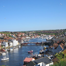 Whitby by Gay Reilly - Novices Only Landscapes