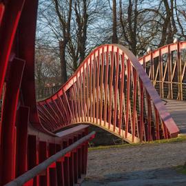 Bridge by Lucien Vandenbroucke - City,  Street & Park  City Parks