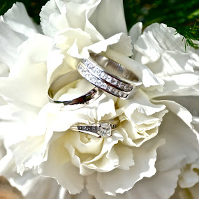 Rings of love by Lora Anne - Wedding Other